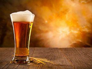 Через сколько часов пиво выводится из крови