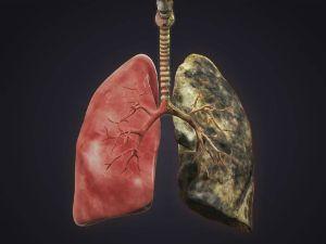 Влияние сигарет на организм